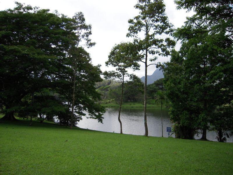 2009 037